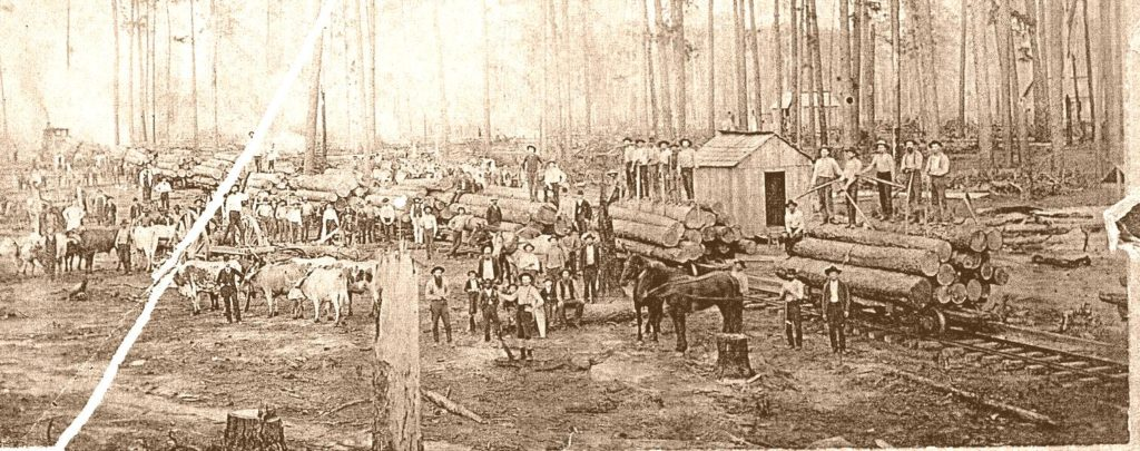 1900 logging that preceded gravel excavation